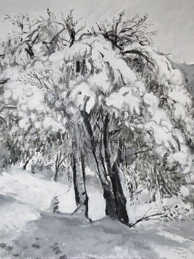Oliviers sous la neige, 8 mars 2018 150x130cm