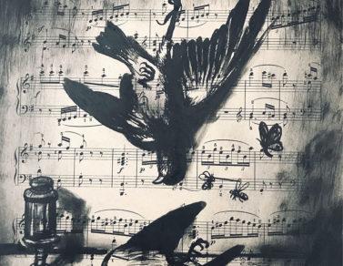 deux oiseaux morts, quatre insectes