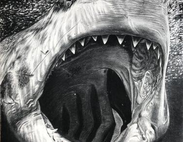 Carcharodon Carcharias, fusain sur Arches, 110x85cm, 2020 -- 1800€
