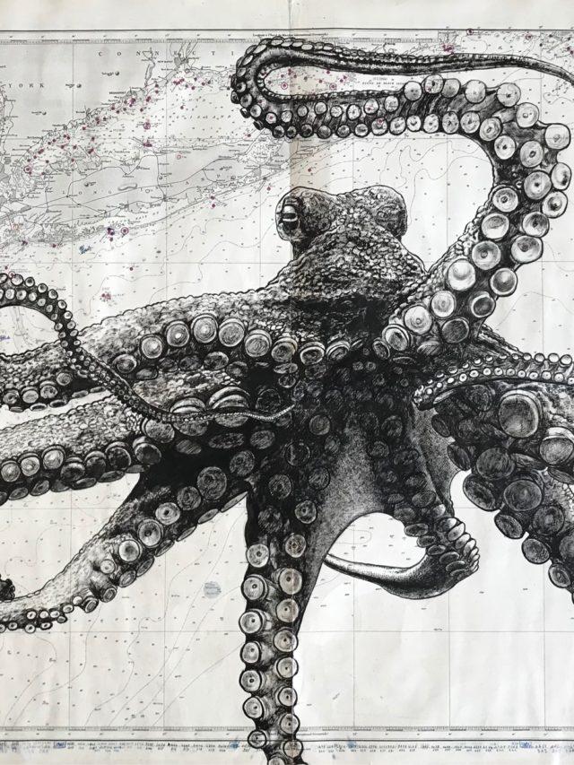 Octopus, encre de chine sur carte maritime, 70x110cm, 2021 -- 2500€